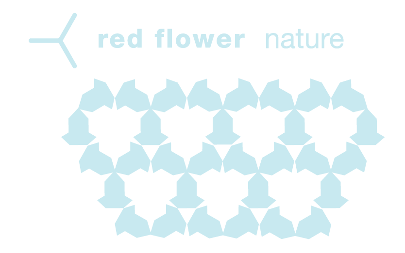 nature_logo-14